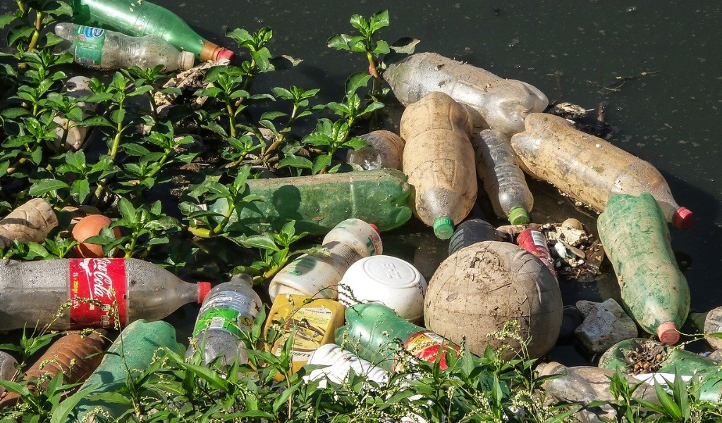 川に捨てられたペットボトルの画像です。